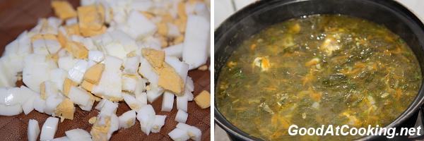 Рецепт зеленого борща с курицей с пошаговыми фото